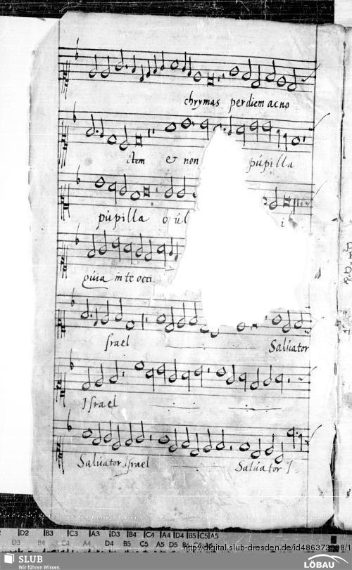 Vorschaubild von 202 Motets - musikalische Stammbücher der Ratsbibliothek Löbau - Mus.Löb.8 + 70