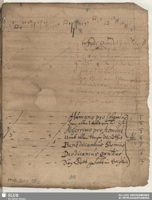 Vorschaubild von 25 Motets - Mus.Sche.35c