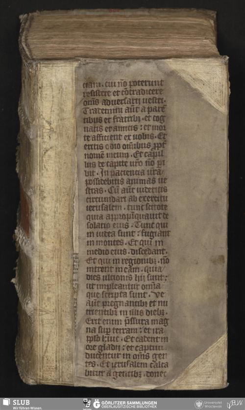 Vorschaubild von Actus Emblematicus Thalloforos S. qvi, juxta Thalloforias Gorlicens. Auctum, apo tu somatos habit[us] in Acroaterio Super. Gymnasii Gorlicensis A[nn]o MDCLXIX. D. III. Non. Jan. - Milichsche Stadt- und Gymnasialbibliothek Görlitz, Mil. Bibl. C. Ch. fol. 129 - UB Wrocław, Mil. II/129.6