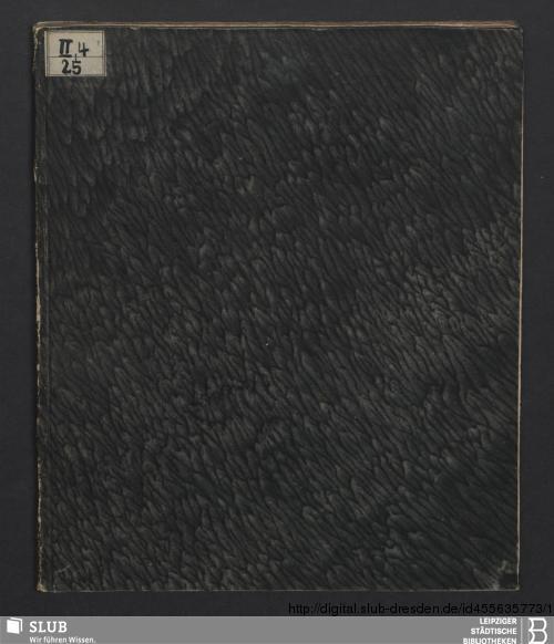 Vorschaubild von Alauda Coelestis, Seu Concentus Sacri