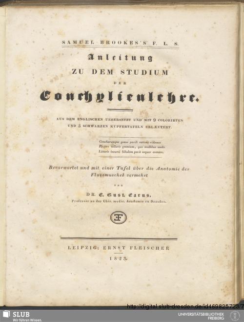 Vorschaubild von Anleitung zu dem Studium der Conchylienlehre
