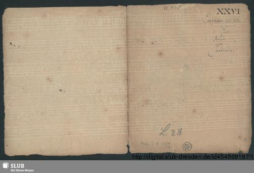 Vorschaubild von Confitebor - Mus.2-E-504