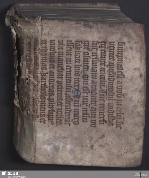 Vorschaubild von Antwort, Von dem bösen zornigen Buch der Professorn zu Wittemberg, an die liebe Kirche, das sie vrteile vnd verstehe, Was vnd wieuil sie dise sachen in gemein, vnnd einen jeden Christen in sonderheit angehen