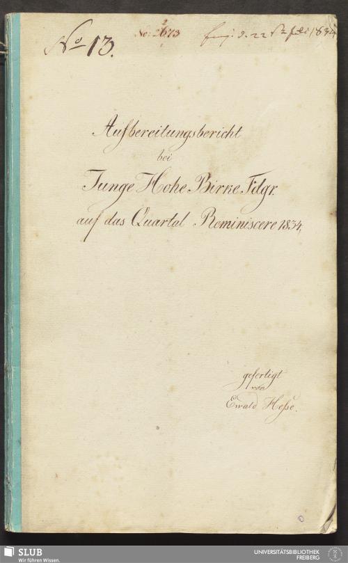Vorschaubild von Aufbereitungsbericht bei Junge Hohe Birke Fdgr. - 18.6925 4.