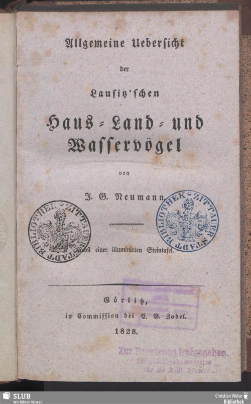 Vorschaubild von Allgemeine Uebersicht der Lausitz'schen Haus- Land- und Wasservögel