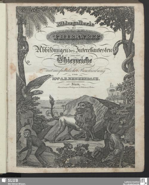 Vorschaubild von Bildergallerie der Thierwelt oder Abbildungen des Interessantesten aus dem Thierreiche
