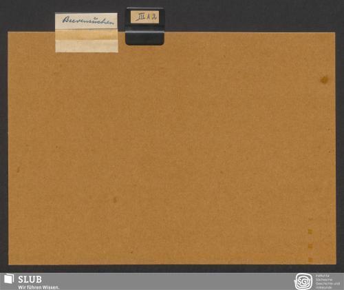 Vorschaubild von Beerensuchen (III A 2)