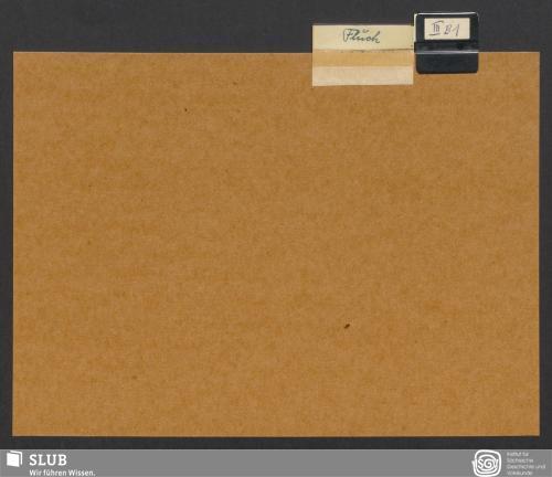 Vorschaubild von Fluch (III B 1)