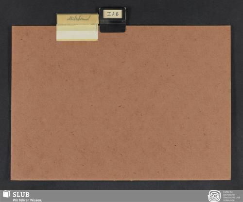 Vorschaubild von Milzbrand (I A B)