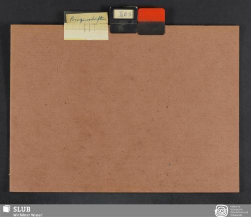 Vorschaubild von Ringinschriften (III B 3)