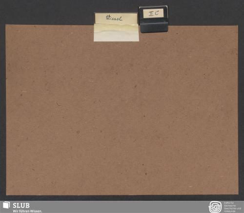 Vorschaubild von Wiesel (II C)