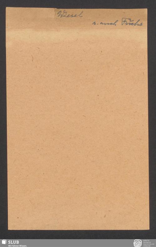 Vorschaubild von Wiesel (?)