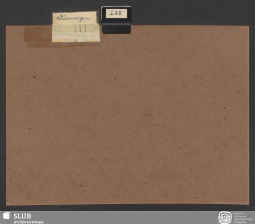 Vorschaubild von Wurmsegen (I A; I B)